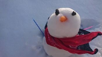 2月2日のレッスン雪のため延期します