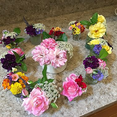 NRicketts flowers