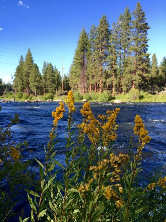 Deschutes River, Bend