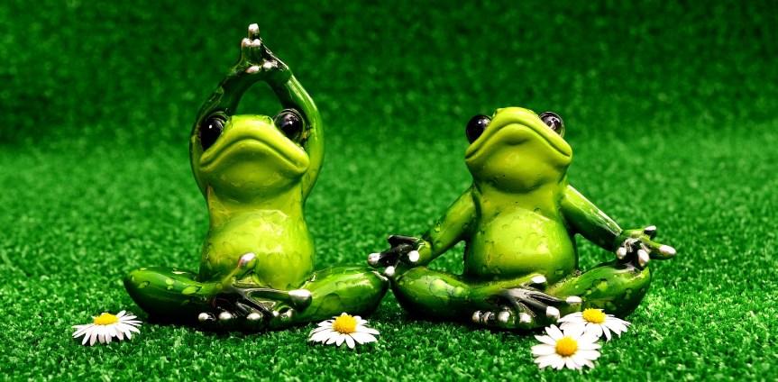 Humble. Yoga. Go!