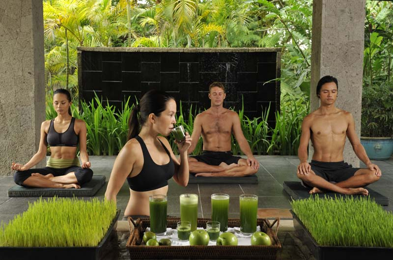 Copy of Healing Sanctuary - Wheatgrass _ Yoga
