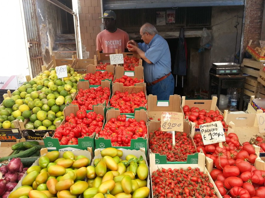 Dreaming of Tomatoes & Sicilian Sun