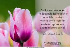 myslienkadna_30