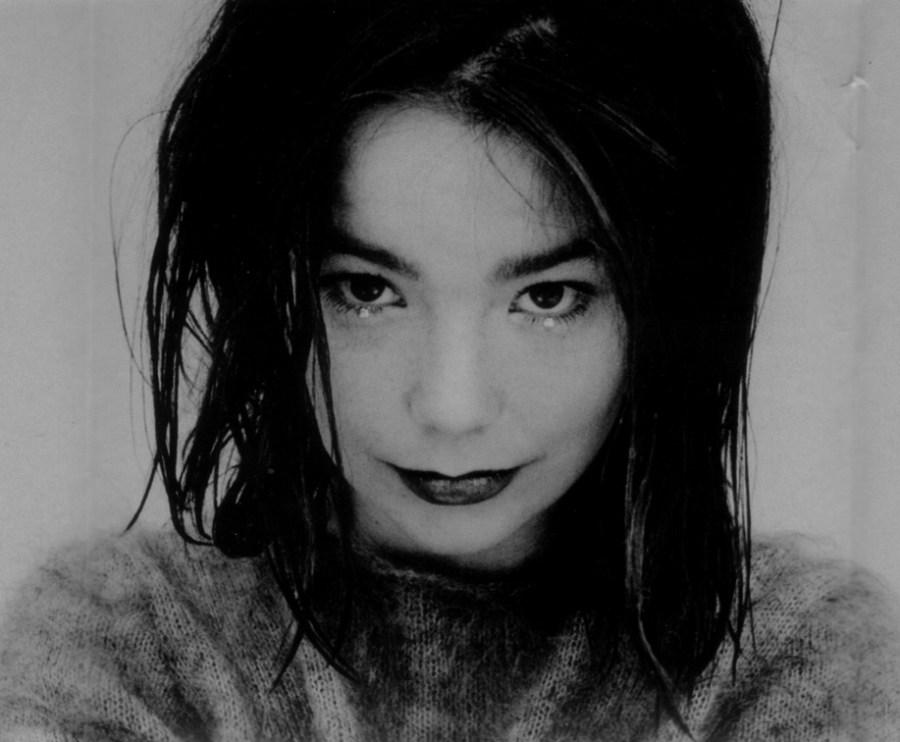 La cantante islandese Björk
