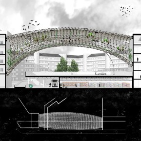section of parking typology