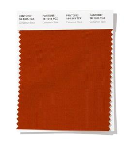 PANTONE 18-1345 Cinnamon Stick - Палочка корицы