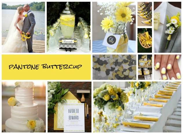 Buttercup Wedding 2016