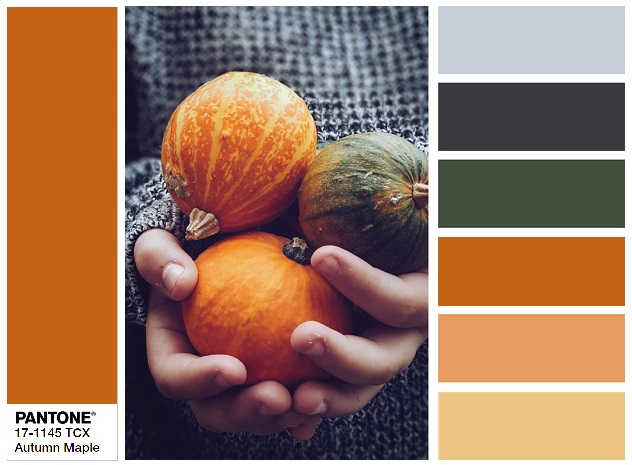 PANTONE 17-1145 Autumn Maple