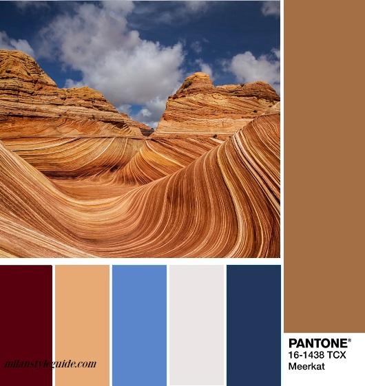 PANTONE 14-1116 Meercat как сочетать модные цвета Пантон осень зима 2018 2019