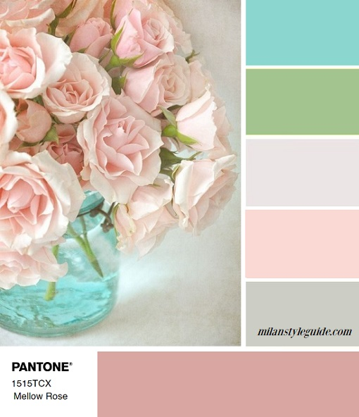 fall winter 2018 2019 color trends Panton mellow rose combination