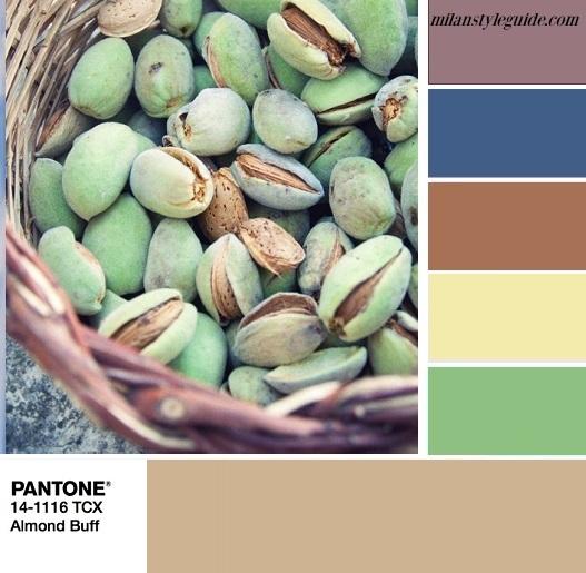 PANTONE 14-1116 Almond Buff цветная палитра Пантон осень 2018 Блестящий миндаль