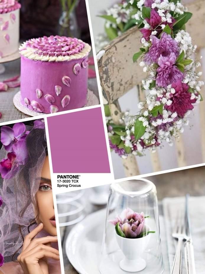 spring crocus wedding color 2018 Цвет свадьбы 2018 – лиловый Spring Crocus