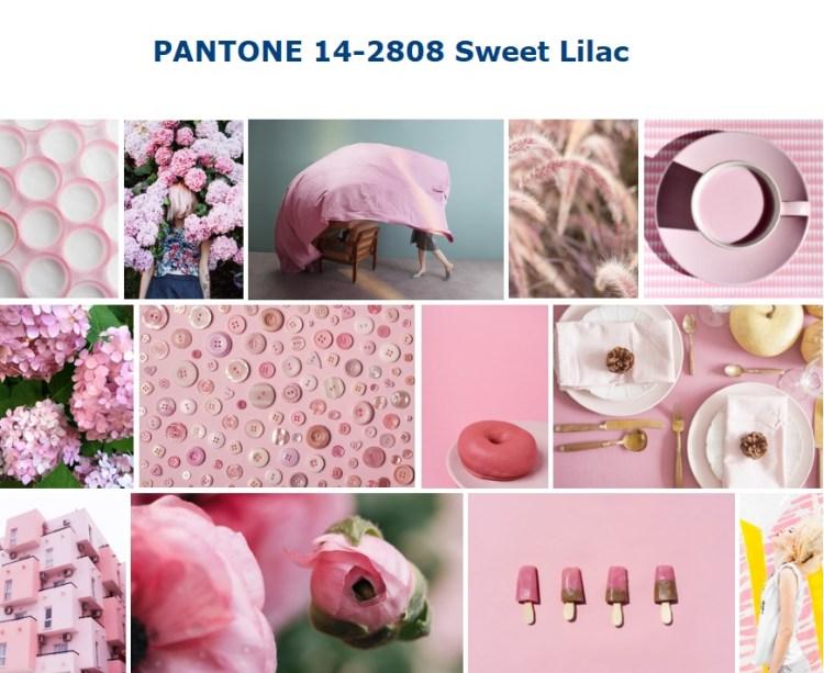 PANTONE 14-2808 Sweet Lilac Сладкая лилия