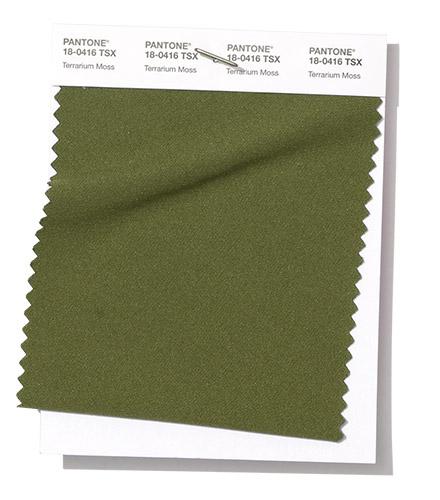 PANTONE 15-0960 Terrarium Moss
