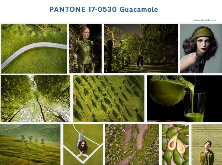 классический цвет Пантон осень зеленый PANTONE 17-0530 Guacamole модный цвет осень зима 2019/2010