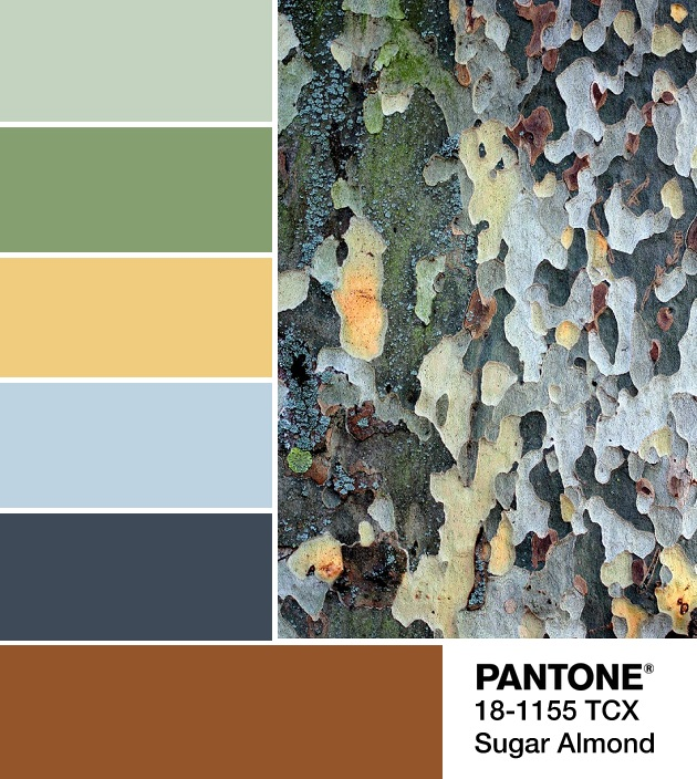 PANTONE 18-1155 Sugar Almond palette