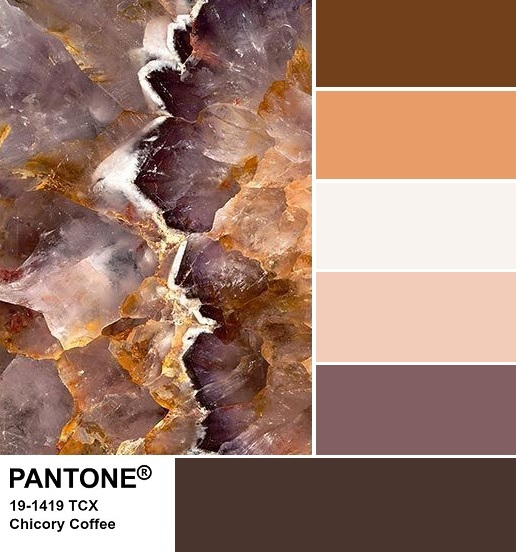 PANTONE 19-1419 Chicory Coffee Palette