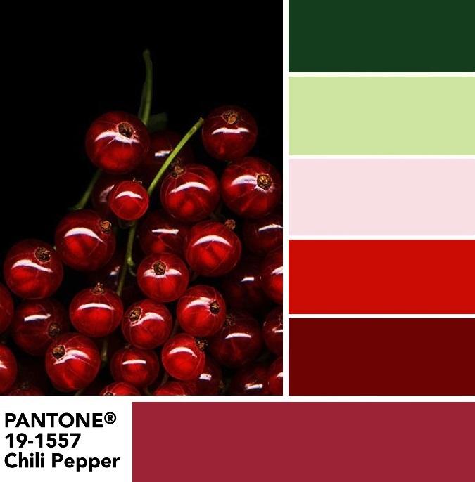 Цветовая палитра PANTONE 19-1557 Chili Pepper - Перец чили