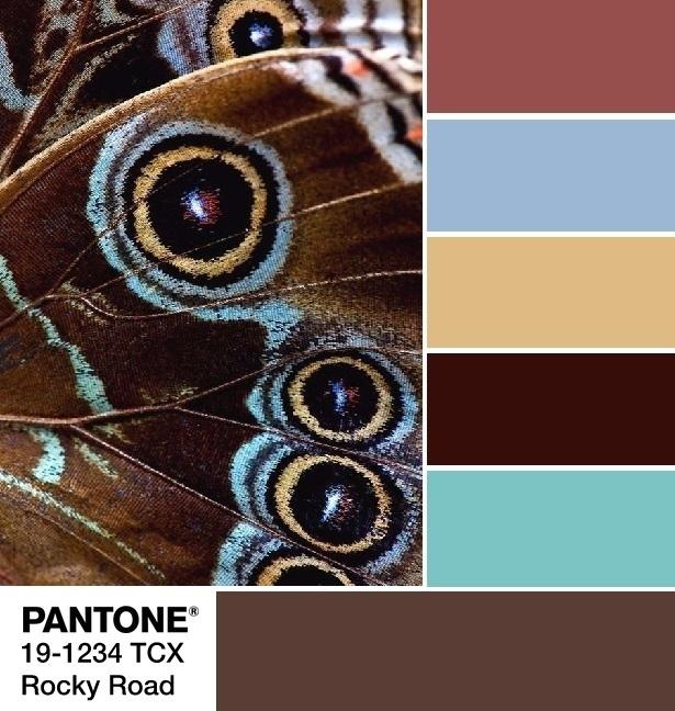Pantone 19-1234 Rocky Road palette