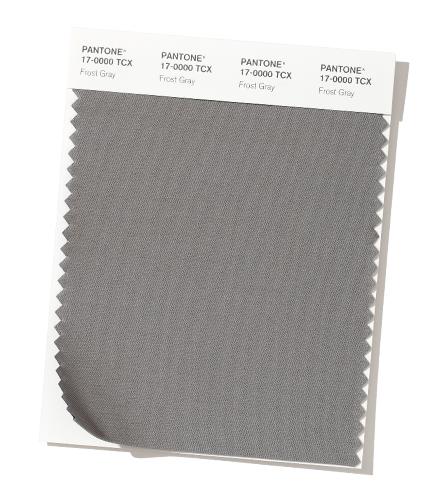PANTONE17-0000 Frost Gray
