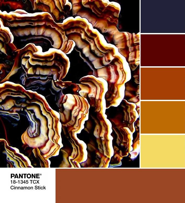 модный цвет весна лето 2020 PANTONE 18-1345 Cinnamon Stick