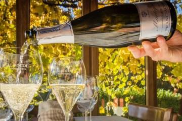 хорошее шампанское на Новый год 2020 - лучшее спуманте Италии