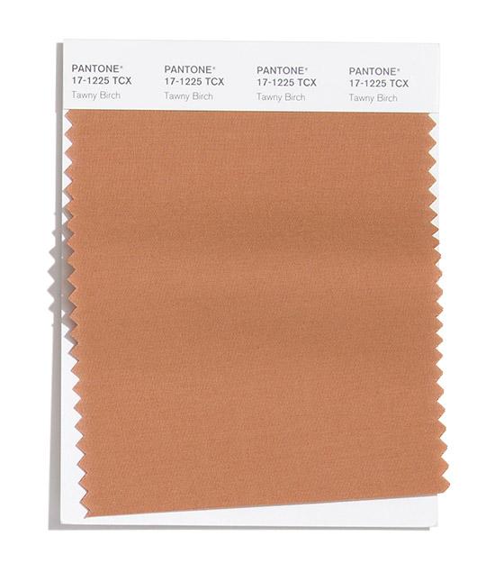 PANTONE 17-1225 Tawny Birch