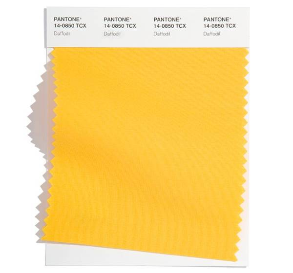 PANTONE 14-0850 Daffodil