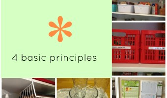 Simple organization: basic principles