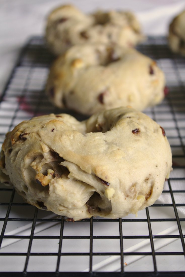 Cranberry Walnut Bagels