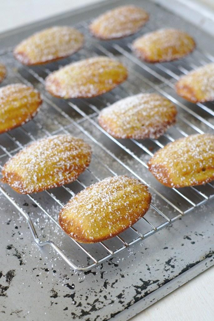 Madeleine Cookie Recipe
