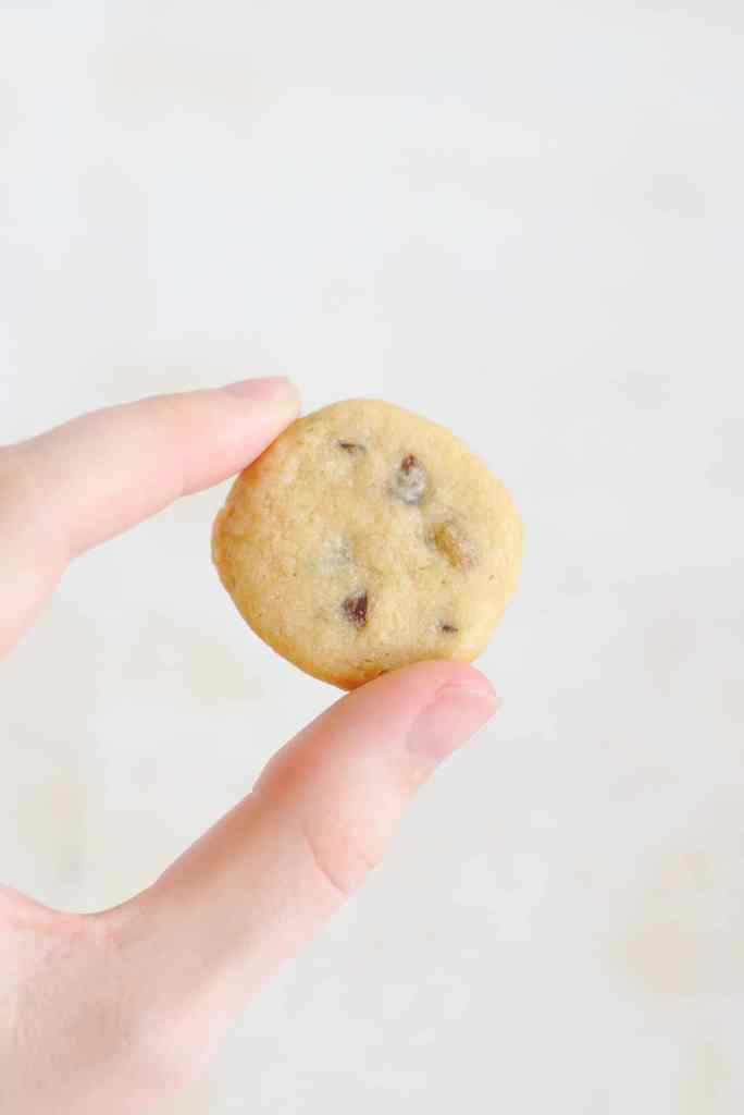 Easy Chocolate Chip Cookie Recipe