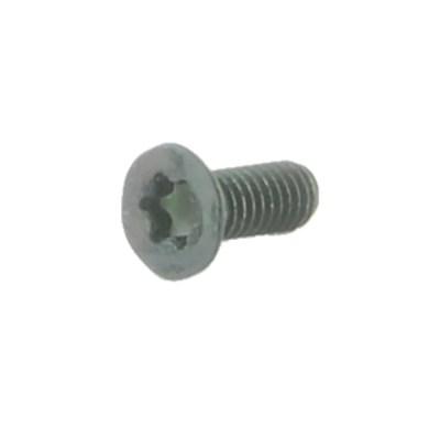 Spuhr A-0120 M4X10 TX20 Accessory Screws