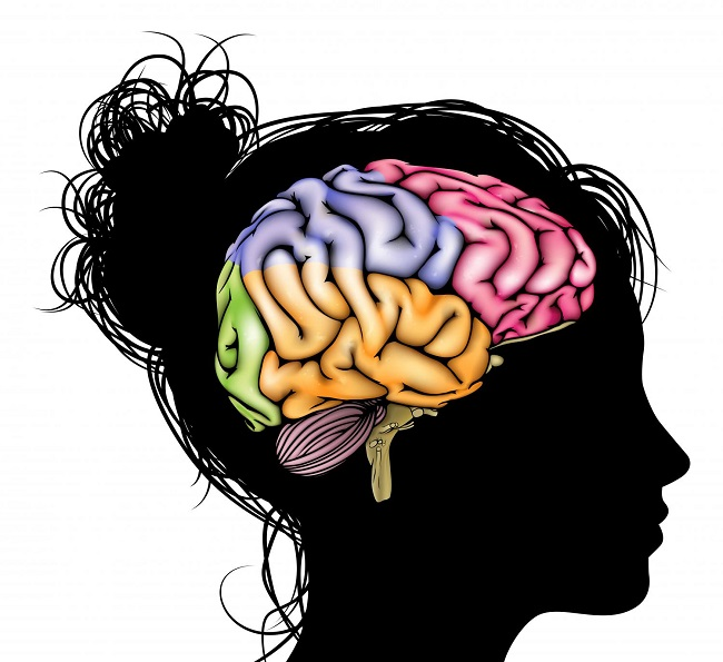 Women's brain develops fast thanks to society