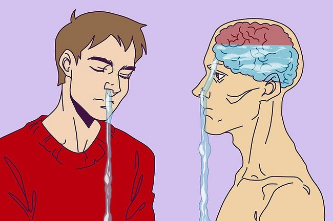 The liquids that come out from your nose are from your brain