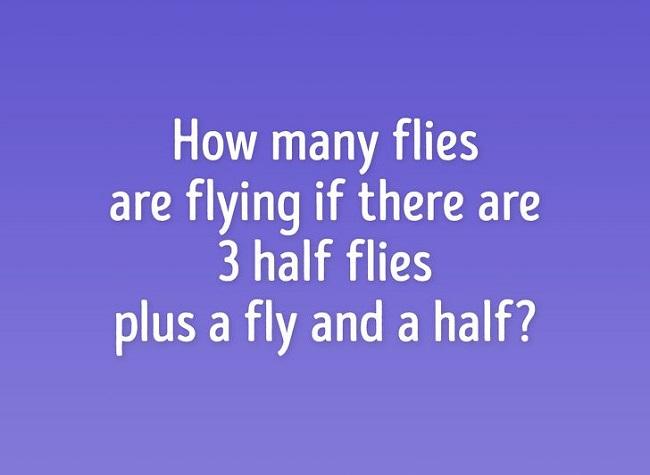 How many flies