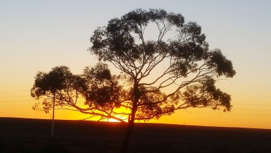Woomera Sunset