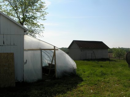 our very first lean-to greenhouse