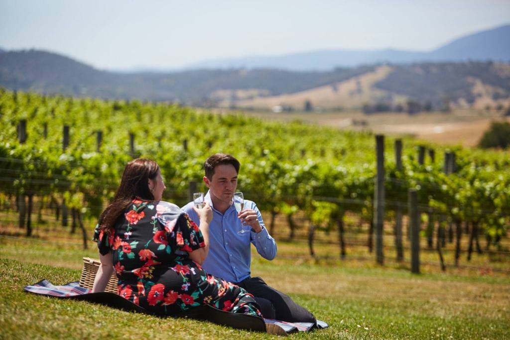 Melbourne Wine tours, picnic on the lawn