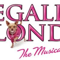 Cast List: Arvada Center's 'Legally Blonde'