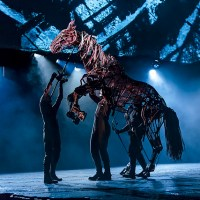 Interview: Patrick Osteen Shares His Experience in 'War Horse'