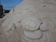 Welcoming sea turtle