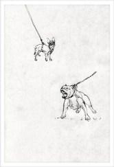 domertas-knyga-milena-iliustracija-5