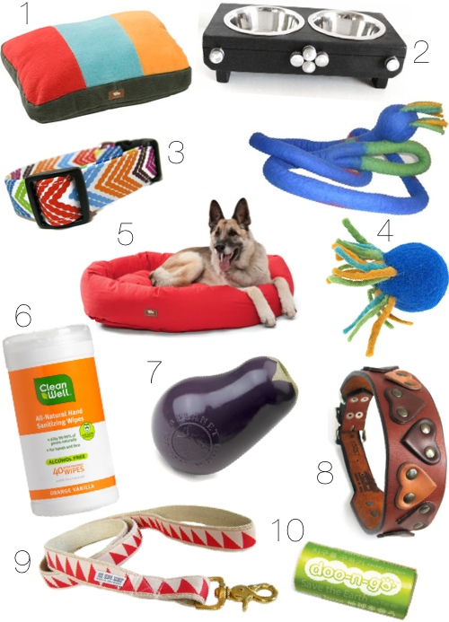 Eco-Friendly Dog Gear