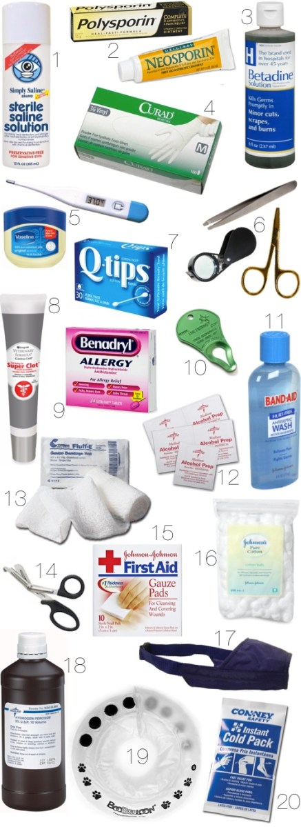 Make Your Own Dog Medical Kit