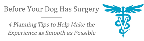 Before Your Dog Has Surgery: </br><i>4 Planning Tips to Help Make the </br>Experience as Smooth as Possible</i>