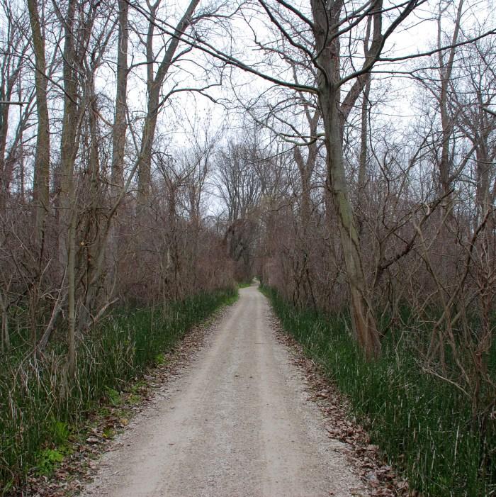 Point Pelee National Park: </br><i>The DeLaurier Homestead, Chinqua Oak & Tilden Woods Trails</i></br>