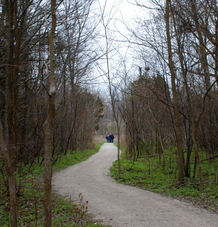 Point Pelee National Park: </br><i>The DeLaurier Homestead, Chinqua Oak & Tilden Woods Trails</i></br>