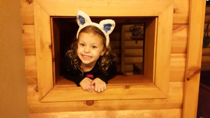 KidCabin Suite at Great Wolf Lodge