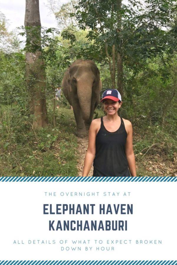 Elephant Haven Kanchanaburi Pinterest